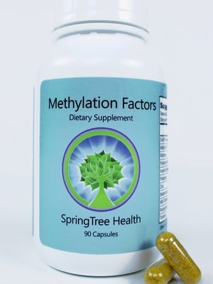 methylation-factors